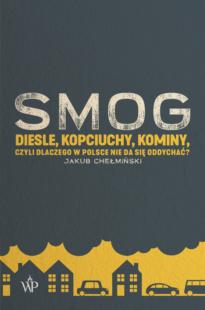 SMOG Diesle, kopciuchy, kominy, czyli dlaczego w Polsce nie da się oddychać?