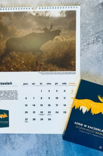 """Pakiet noworoczny: kalendarz na 2021 rok i książka """"Łosie w kaczeńcach"""""""